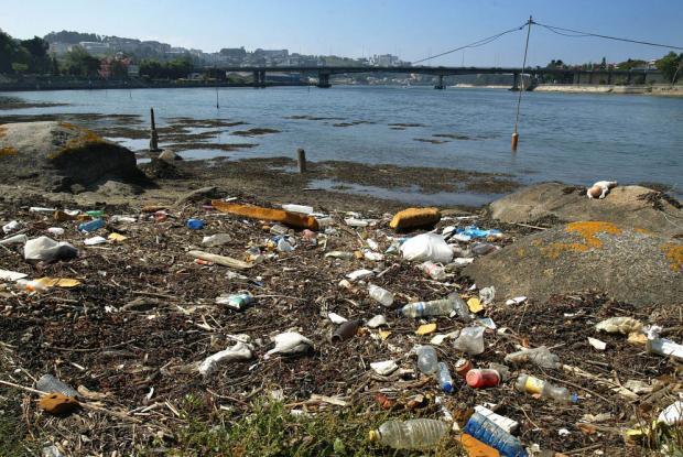 Varias ONG medioambientales en contra del dragado de la Ría do Burgo