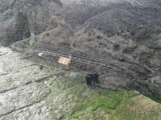 Ferralla abandonada no Porto de Santa Cruz
